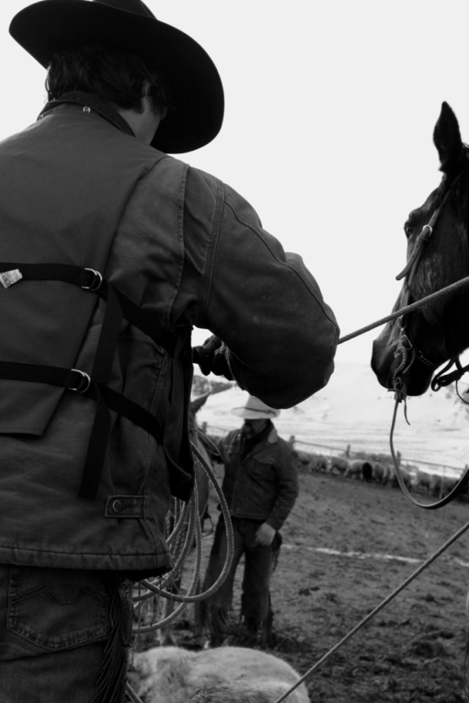 CowboySeries EmilieSchroder 1 683x1024