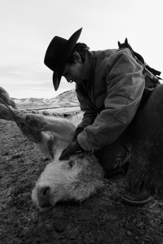 CowboySeries EmilieSchroder 5 683x1024