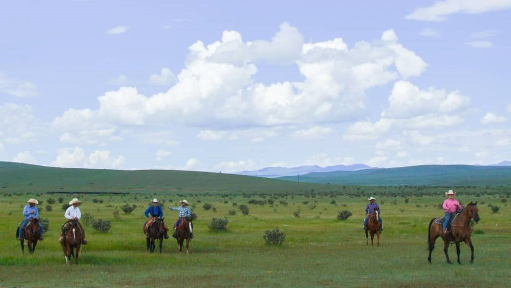 Cowboys horseback at block green 2 1024x577